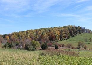 Last Chance Fall Foliage Bike Trips!