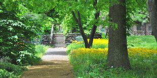 Bartram's Garden